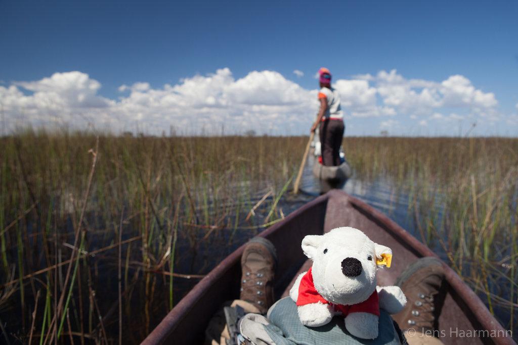 Mit dem Mokoro durch das Delta